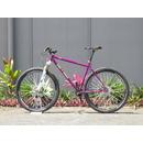 bikeins012