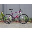 bikeins011