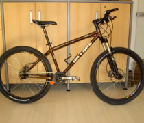 Browny bike photo