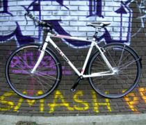 Tinkerbell bike photo
