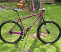 Purpelfinetwonine bike photo