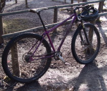 Alfined Purple Inbred 29er bike photo