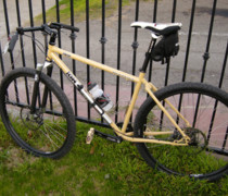 Inbred 29er Dingle bike photo