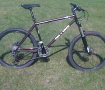 456 In Sexual Chocolate Brown bike photo