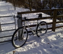 Moby Dick (its Big And White) bike photo