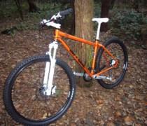 Tony The Tiger - Its Grrreeeaattt! bike photo