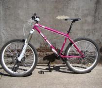 Pinki bike photo