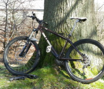 456 In Chocco Brown bike photo