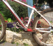 Wipi bike photo