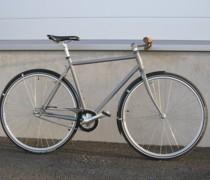 Gray Coaster bike photo