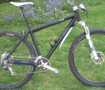 Dark Horse bike photo