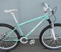 456 - White Mint Purple bike photo