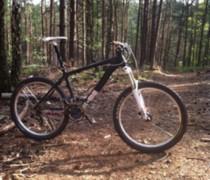 Plastic Fantastic bike photo