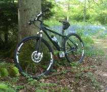 Something About Mary bike photo
