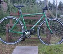 The Green Green Machine bike photo