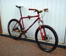 Goldie Lookin Inbred bike photo