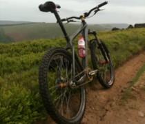 Carbon 456 32:17 Single Speed bike photo