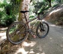 Cocoa bike photo