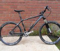 Blinglespeed bike photo