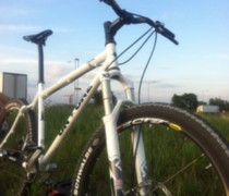 The XX Inbred bike photo