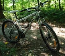 Whitey bike photo