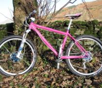 Pink Thumper bike photo