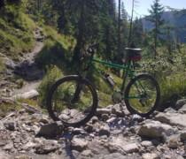 Grüner Stahl bike photo