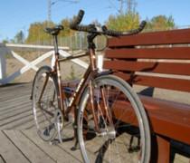The Workhorse bike photo