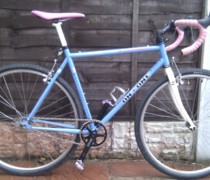 Inthestink bike photo