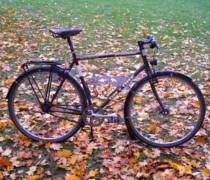 Daily Beater bike photo