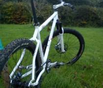 Lilly White bike photo