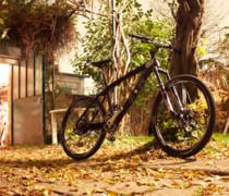 Custom Matte bike photo