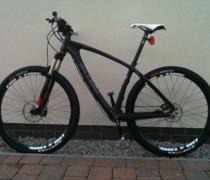 Lucky (the Lurcher) bike photo