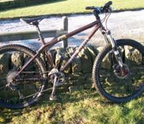 Beefy Bert bike photo