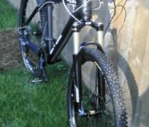 The Zebra bike photo