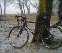 Dirty Dirty Disco bike photo
