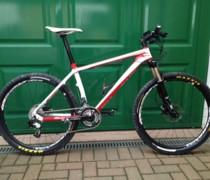 Whippet bike photo