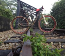 Carbon 29er Race bike photo