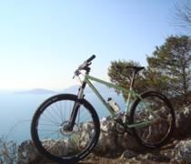 Grinbred bike photo