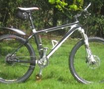Whippet Rohloff bike photo