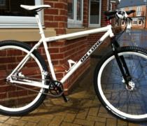 Curly bike photo