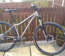 Fireline Ti 29er bike photo