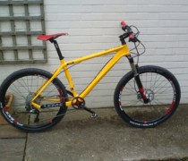 9.2 Kg Whippet bike photo