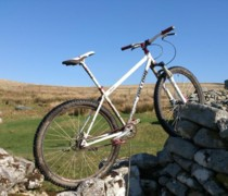 My Inbred bike photo