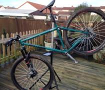 Dirty B1tch bike photo