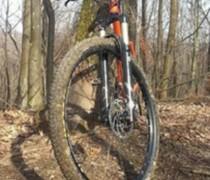 Ginger - OnOne Inbred 29er bike photo