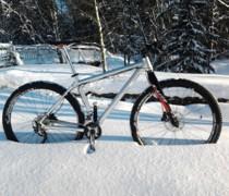 Scandal... bike photo
