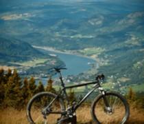 Whippetsa bike photo