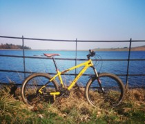 Eh Up Duck (llama)  bike photo