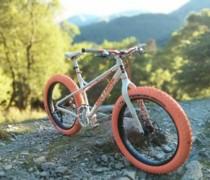 Shaniqua bike photo